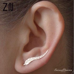 Modern Beautiful Feather Earrings